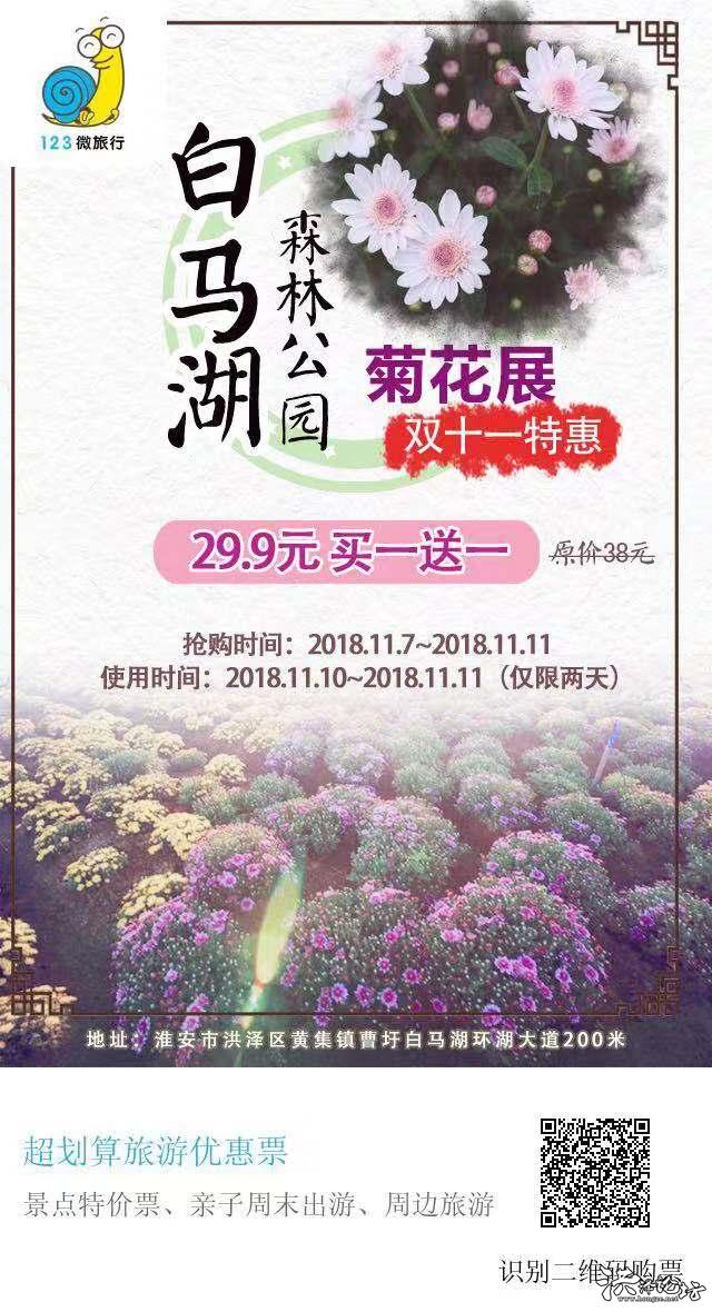 双十一菊花展.jpg