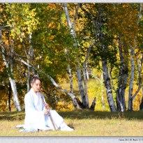 内蒙古乌兰布统草原上拍摄